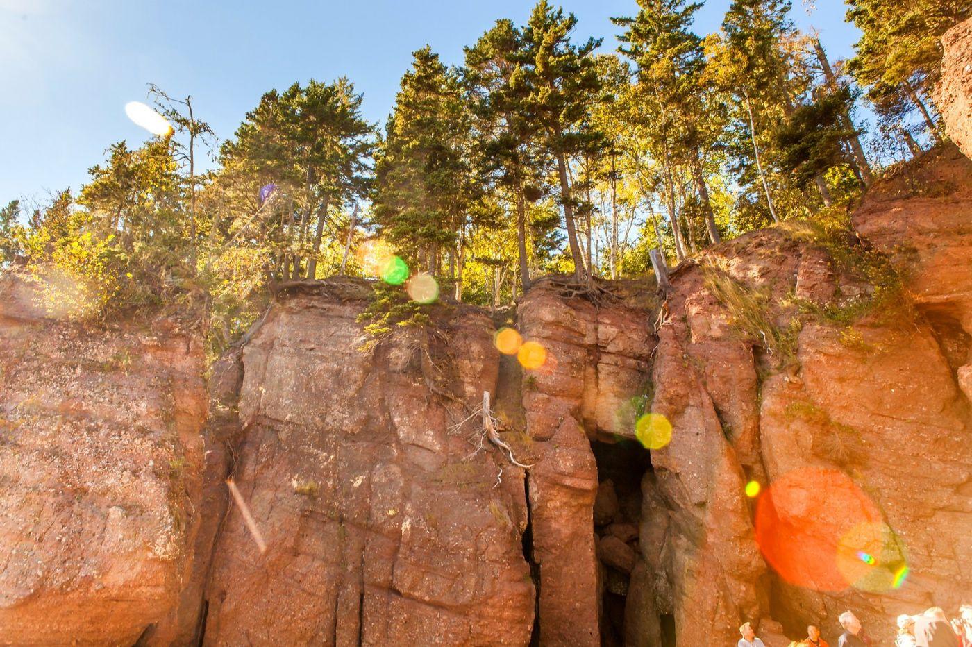 加拿大Hopewell岩石,潮起潮落显英姿_图1-16