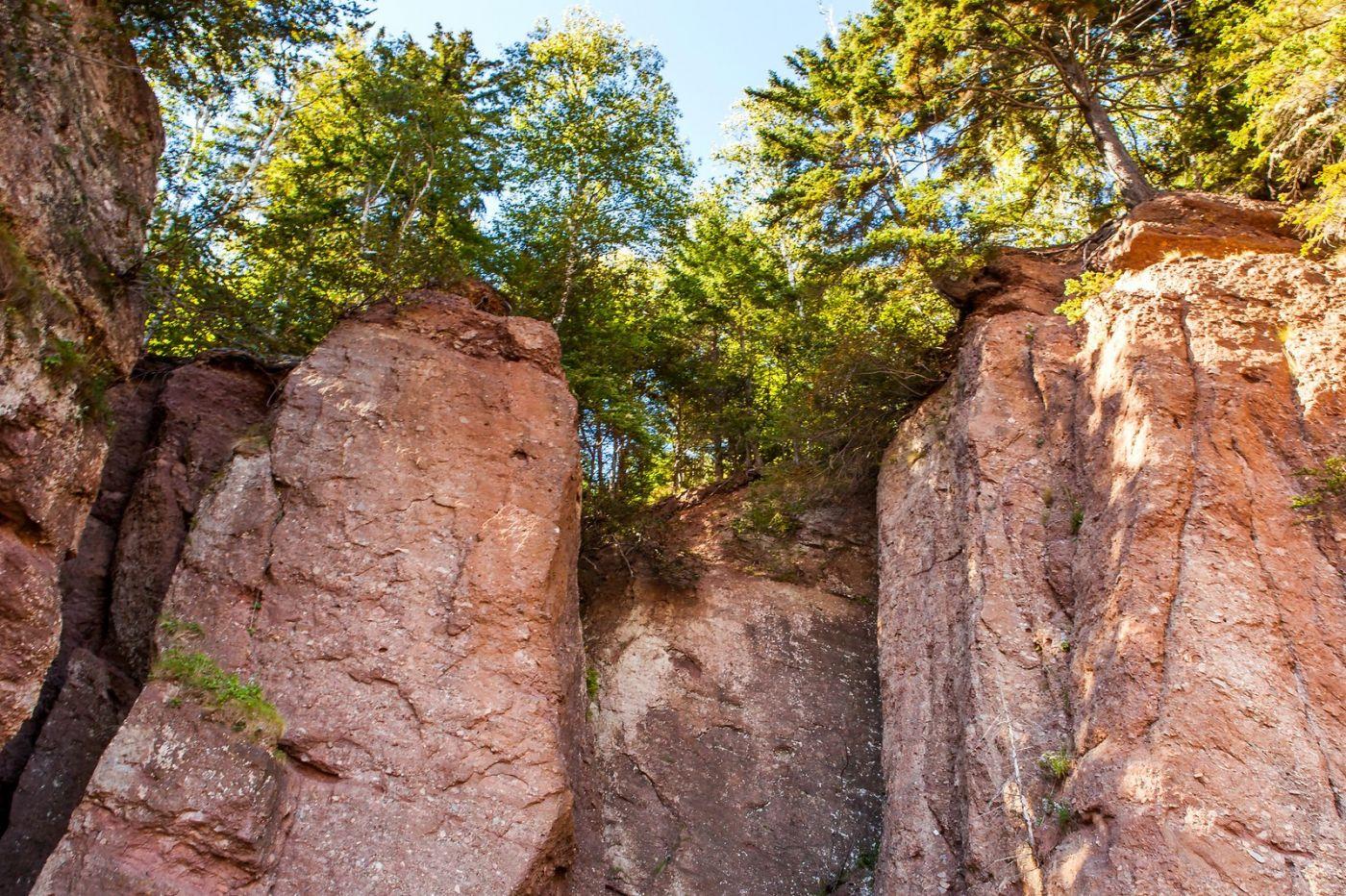加拿大Hopewell岩石,潮起潮落显英姿_图1-9