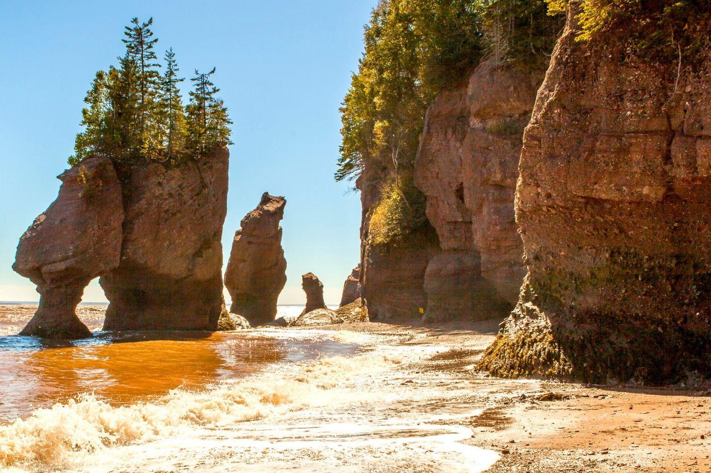加拿大Hopewell岩石,潮起潮落显英姿_图1-12