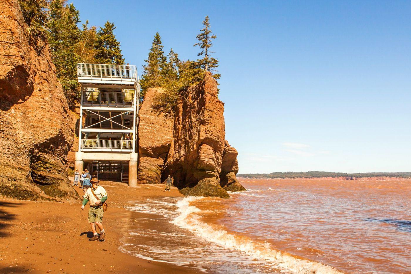加拿大Hopewell岩石,潮起潮落显英姿_图1-14