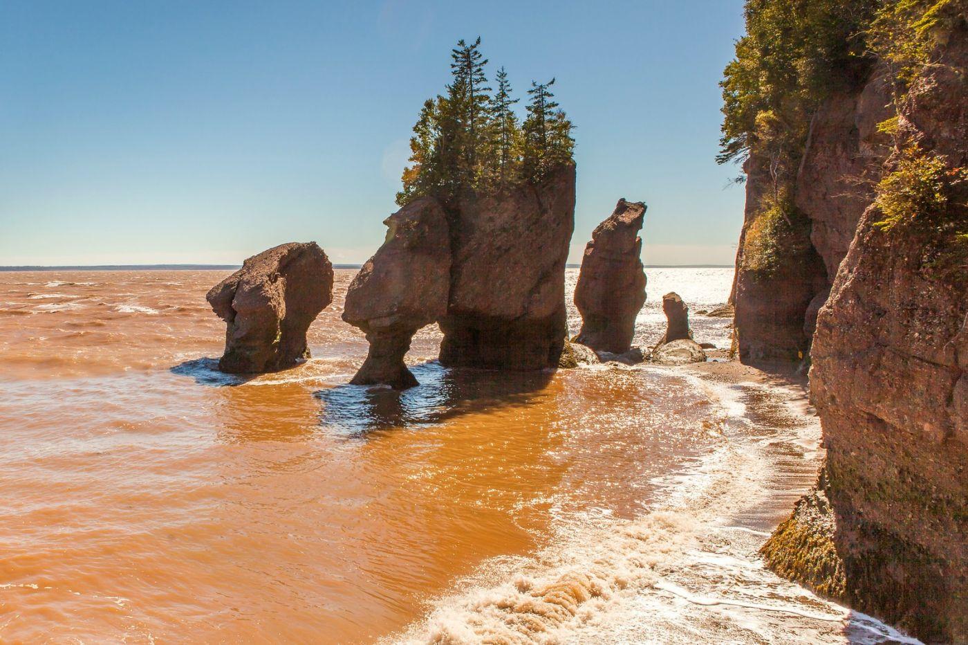 加拿大Hopewell岩石,潮起潮落显英姿_图1-15