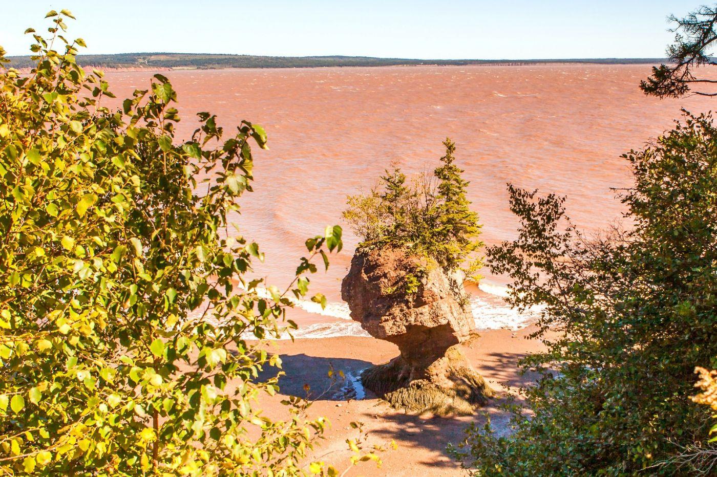 加拿大Hopewell岩石,潮起潮落显英姿_图1-17