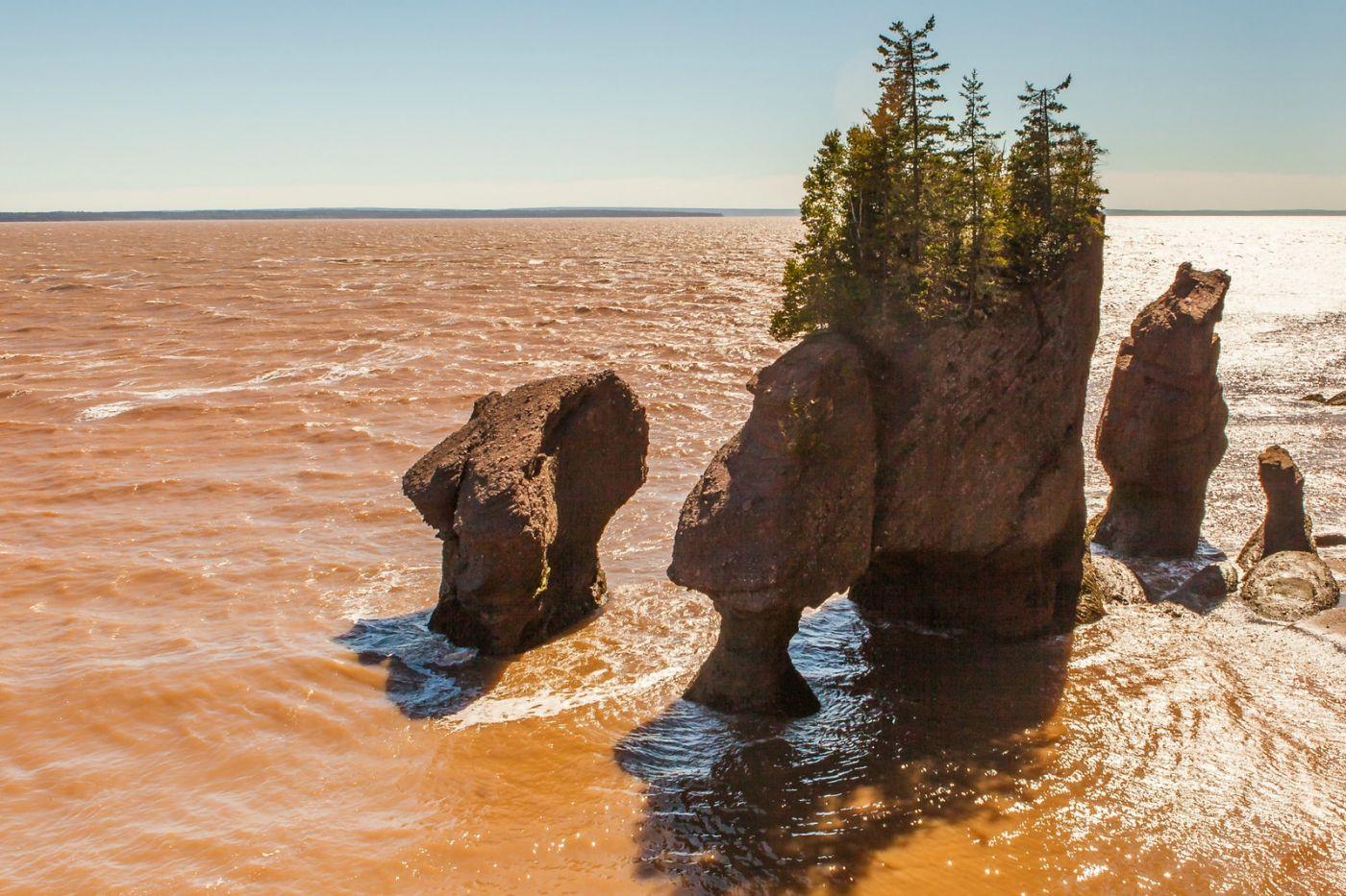 加拿大Hopewell岩石,潮起潮落显英姿_图1-18