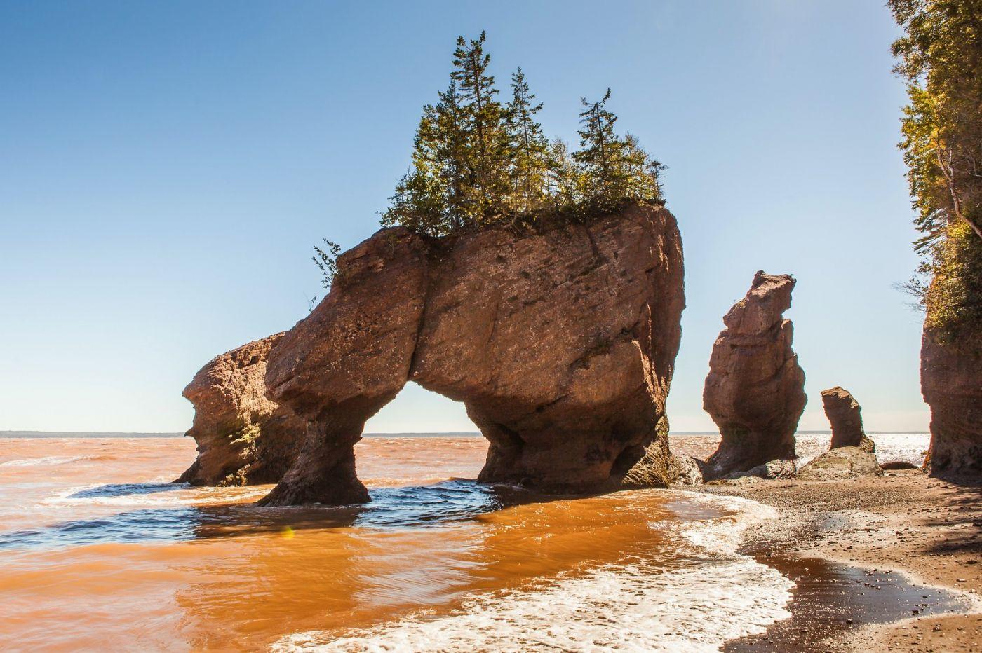 加拿大Hopewell岩石,潮起潮落显英姿_图1-20