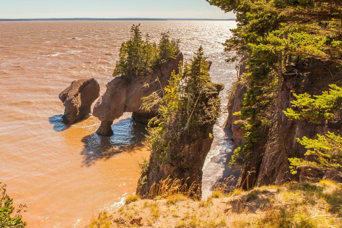 加拿大Hopewell岩石,潮起潮落显英姿_图1-19