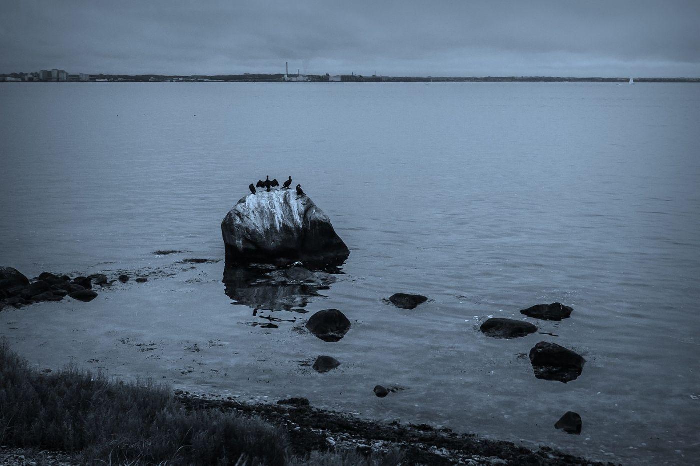 丹麦哥本哈根,坐船看市景_图1-32