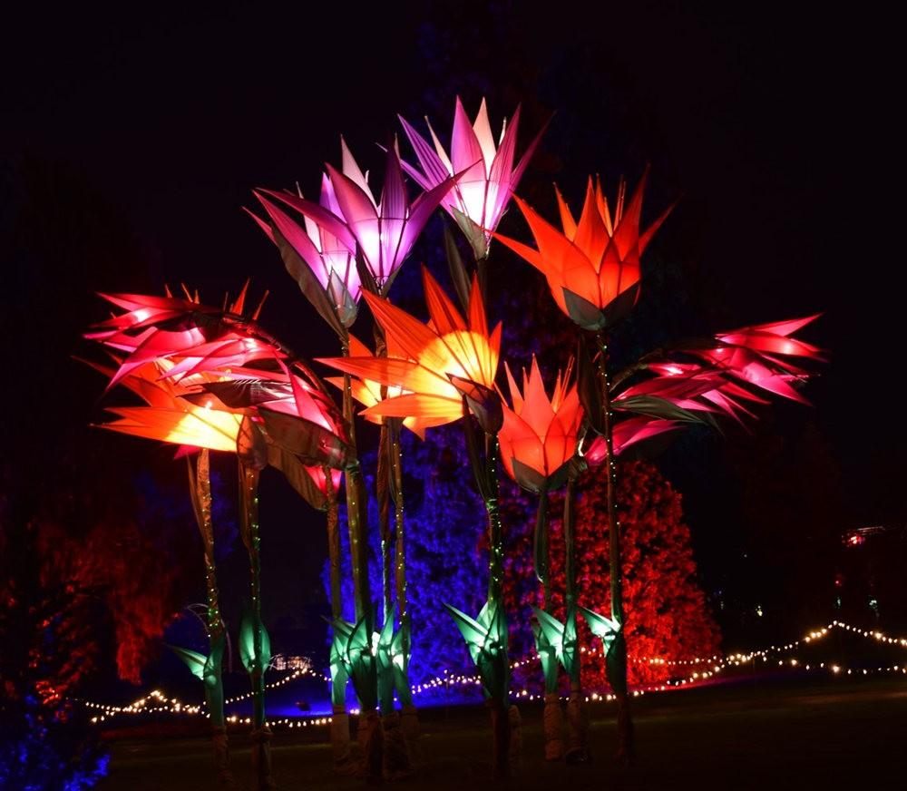 威斯利花园12月的晚上----精美与细致的典范_图1-1
