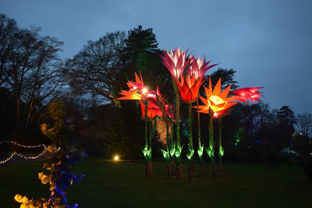 威斯利花园12月的晚上----精美与细致的典范_图1-5