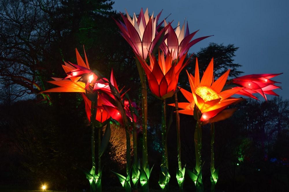 威斯利花园12月的晚上----精美与细致的典范_图1-6