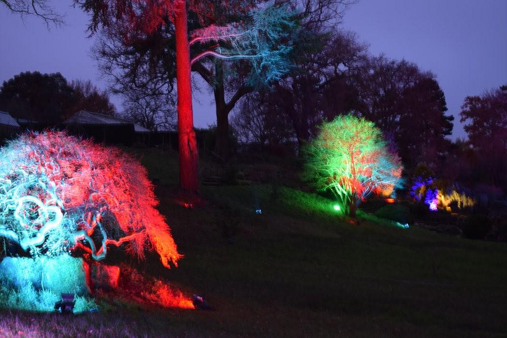 威斯利花园12月的晚上----精美与细致的典范_图1-10