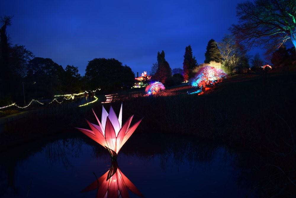 威斯利花园12月的晚上----精美与细致的典范_图1-11