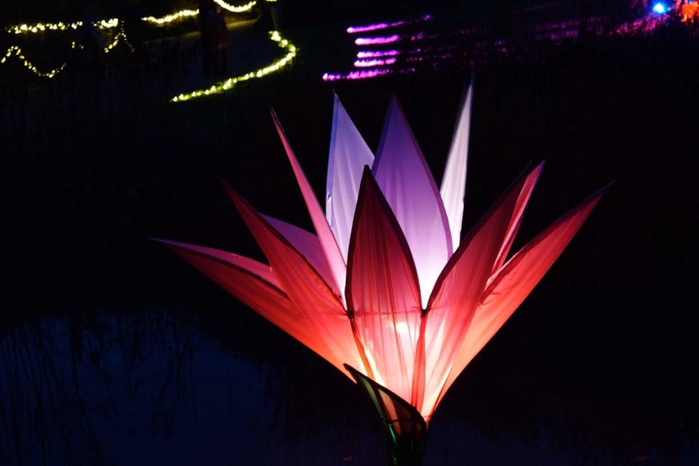 威斯利花园12月的晚上----精美与细致的典范_图1-12