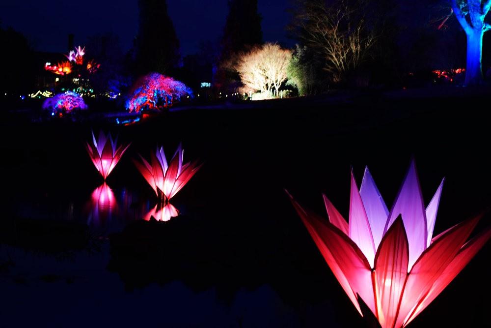 威斯利花园12月的晚上----精美与细致的典范_图1-13