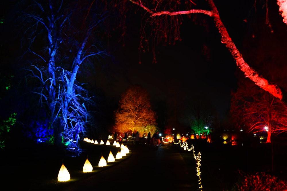 威斯利花园12月的晚上----精美与细致的典范_图1-16