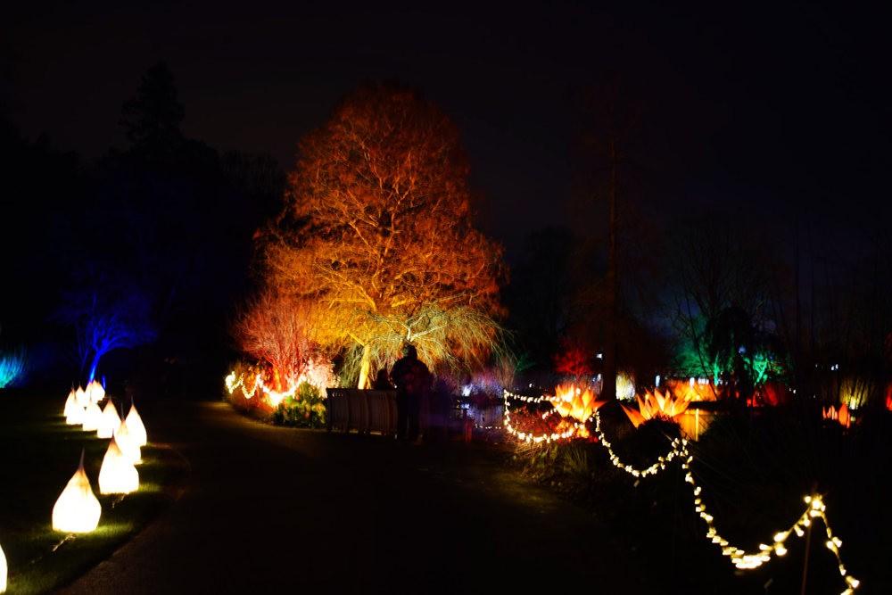 威斯利花园12月的晚上----精美与细致的典范_图1-17