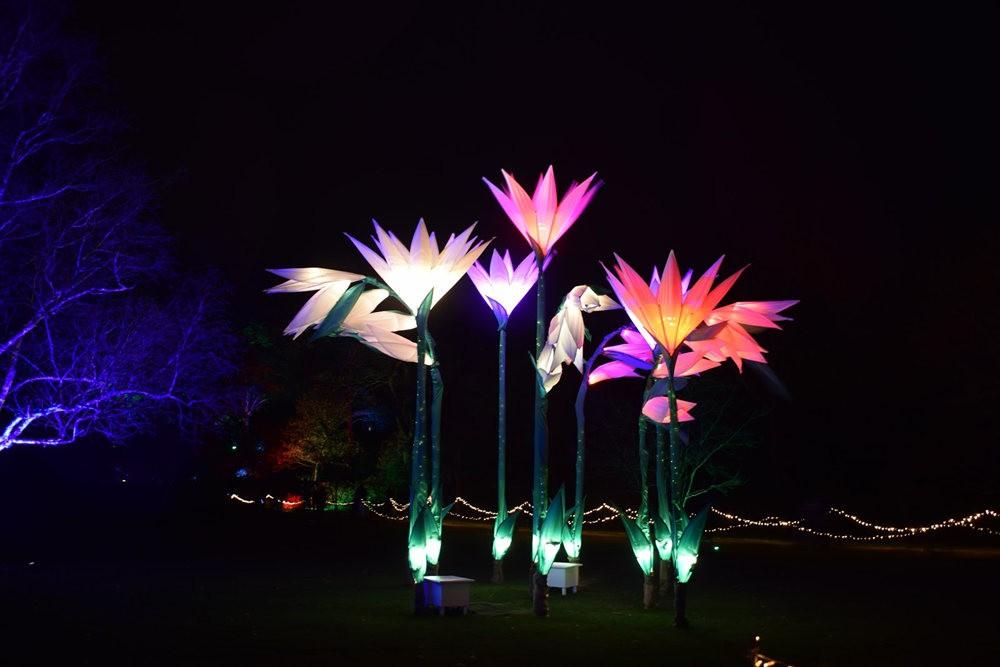 威斯利花园12月的晚上----精美与细致的典范_图1-18
