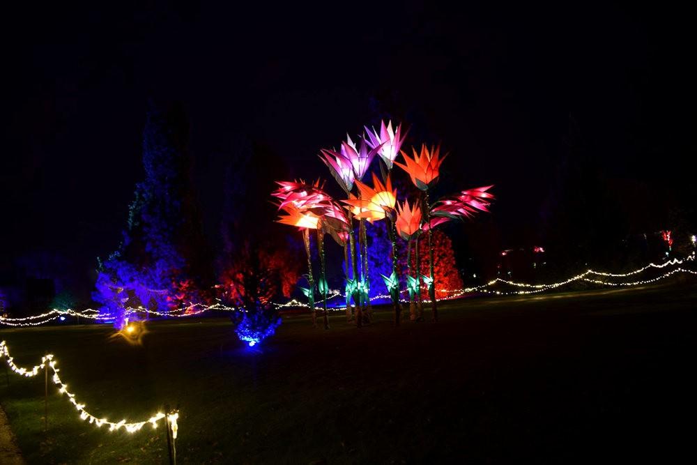 威斯利花园12月的晚上----精美与细致的典范_图1-20