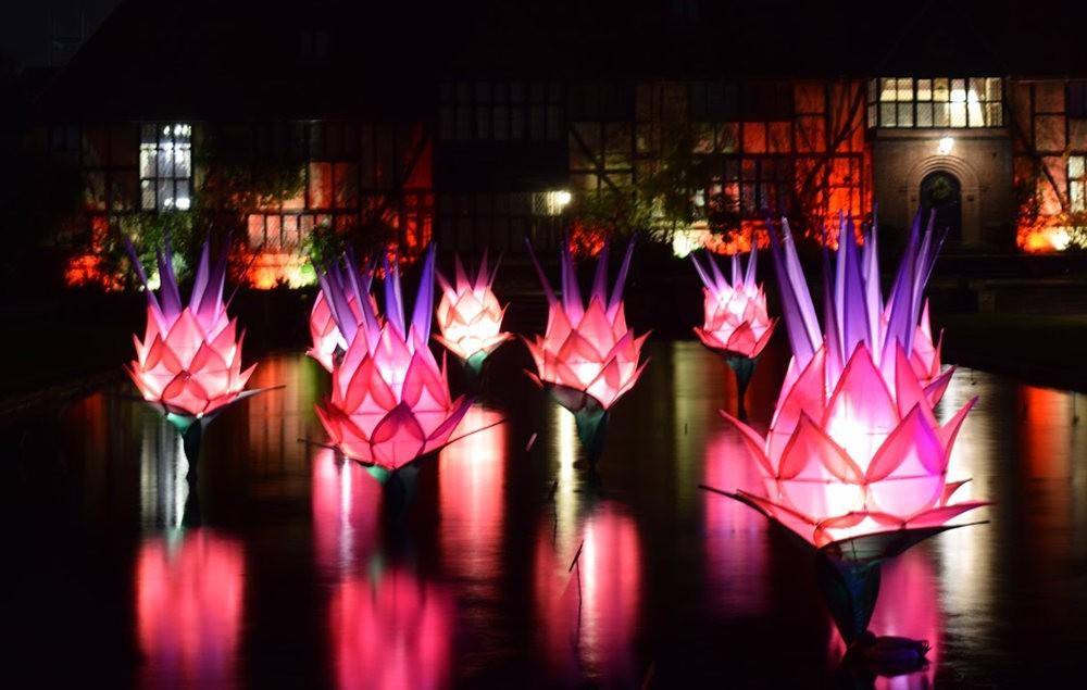 威斯利花园12月的晚上----精美与细致的典范_图1-21