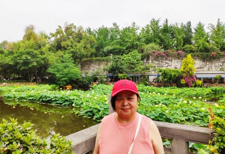成都文化公园看荷花,百花坛公园呼吸新鲜空气!_图1-10
