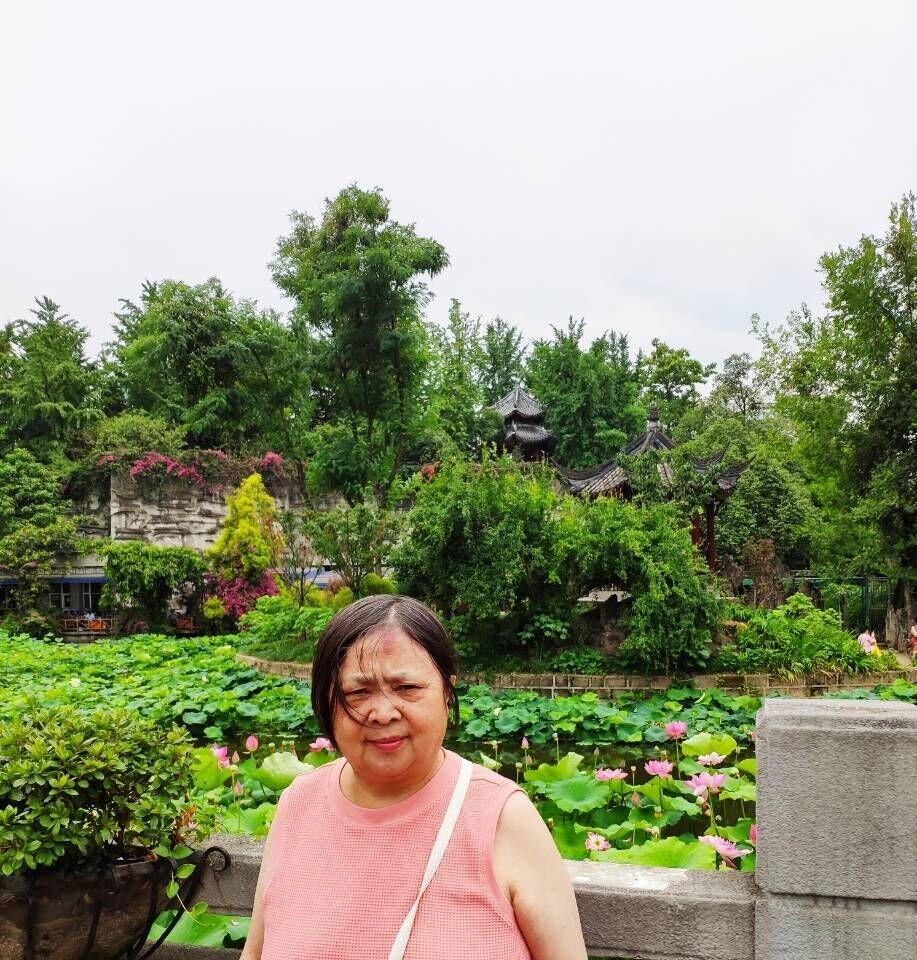 成都文化公园看荷花,百花坛公园呼吸新鲜空气!_图1-12