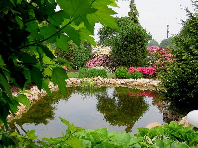 杜鹃花园_图1-5