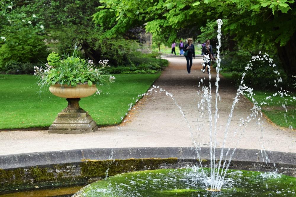 牛津大学植物园_图1-5