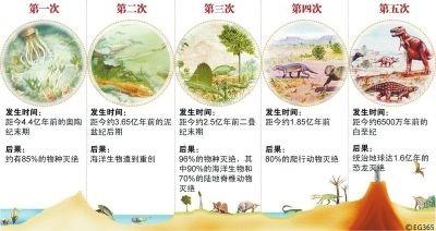 物种——大灭绝……135条评论_图1-2