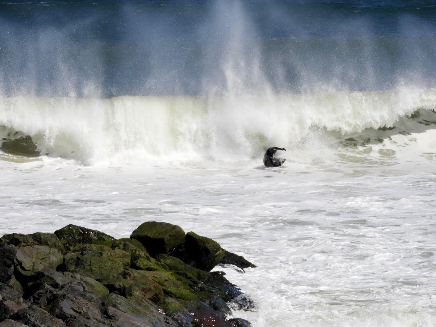 新泽西州冲浪者_图1-10