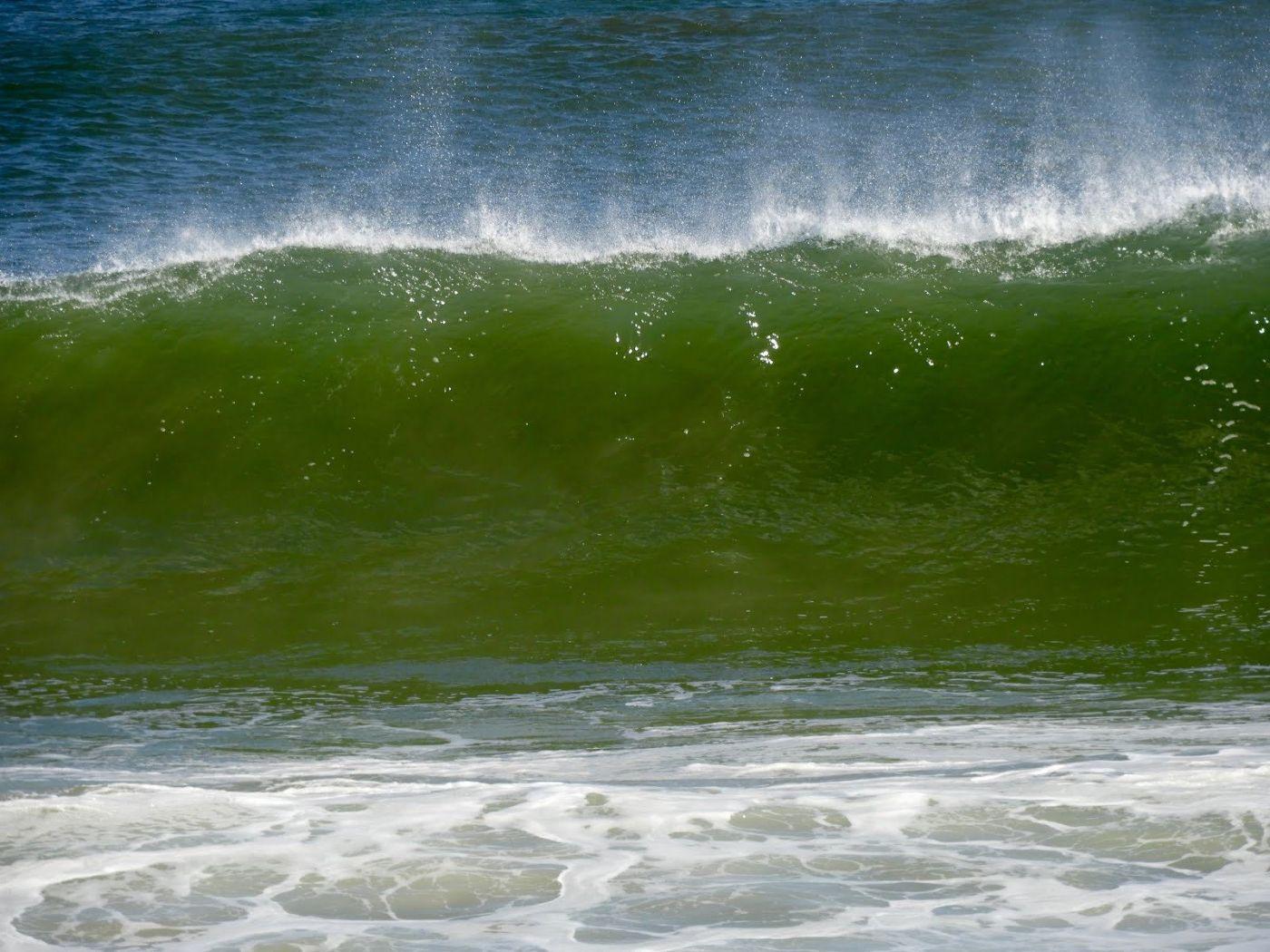 新泽西州冲浪者_图1-11