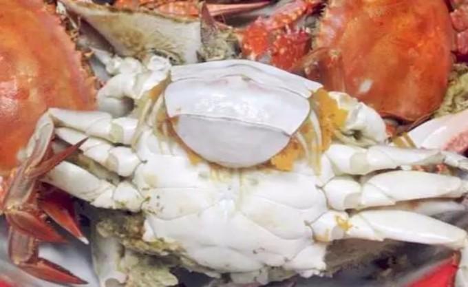 吃海鲜有什么学问,螃蟹肚子要朝上,蛤蜊不能加水煮,别人不会告诉你! ..._图1-6