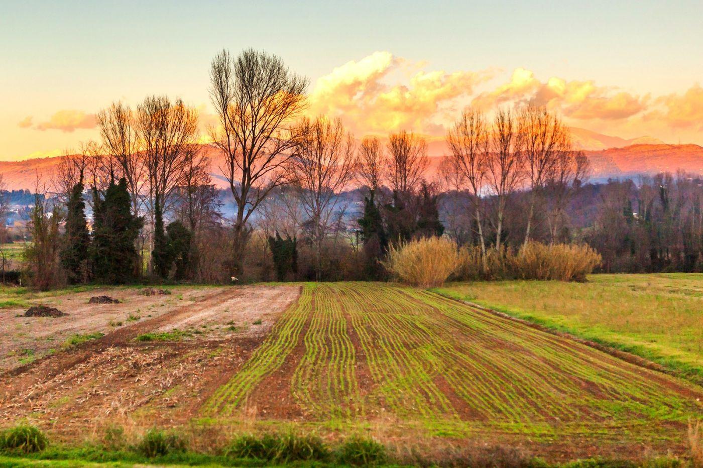 意大利路途,黄昏时的乡村_图1-21