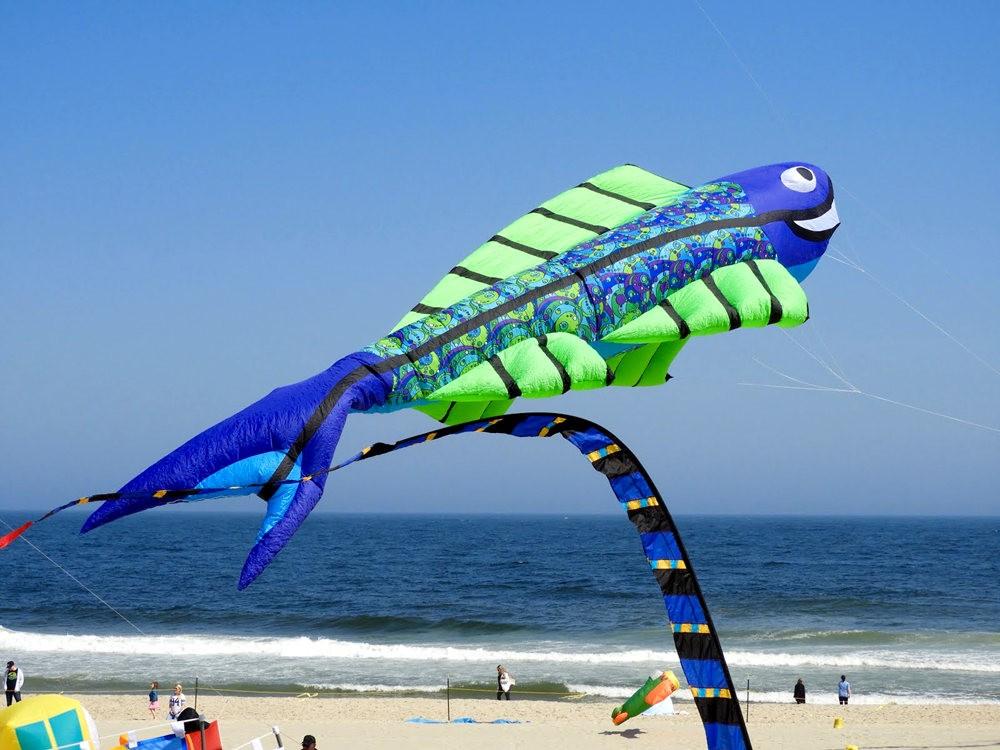 郎布兰奇海滩风筝节_图1-8