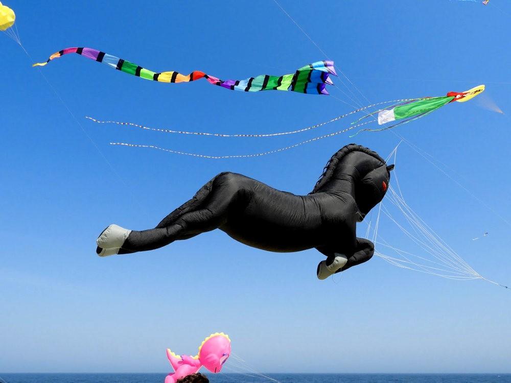 郎布兰奇海滩风筝节_图1-11