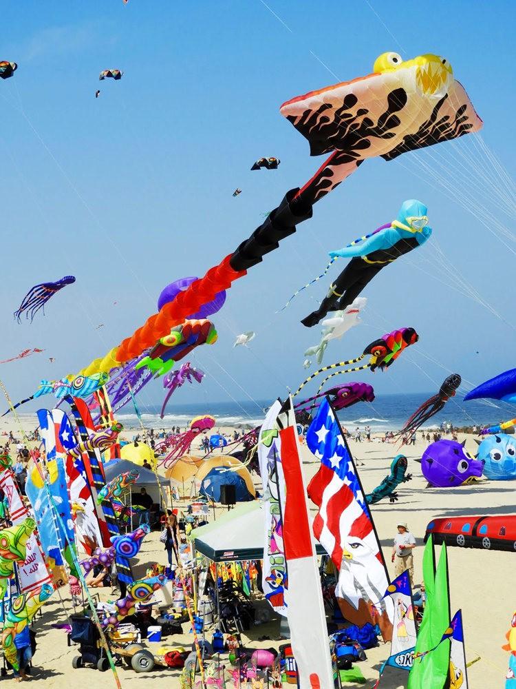 郎布兰奇海滩风筝节_图1-15