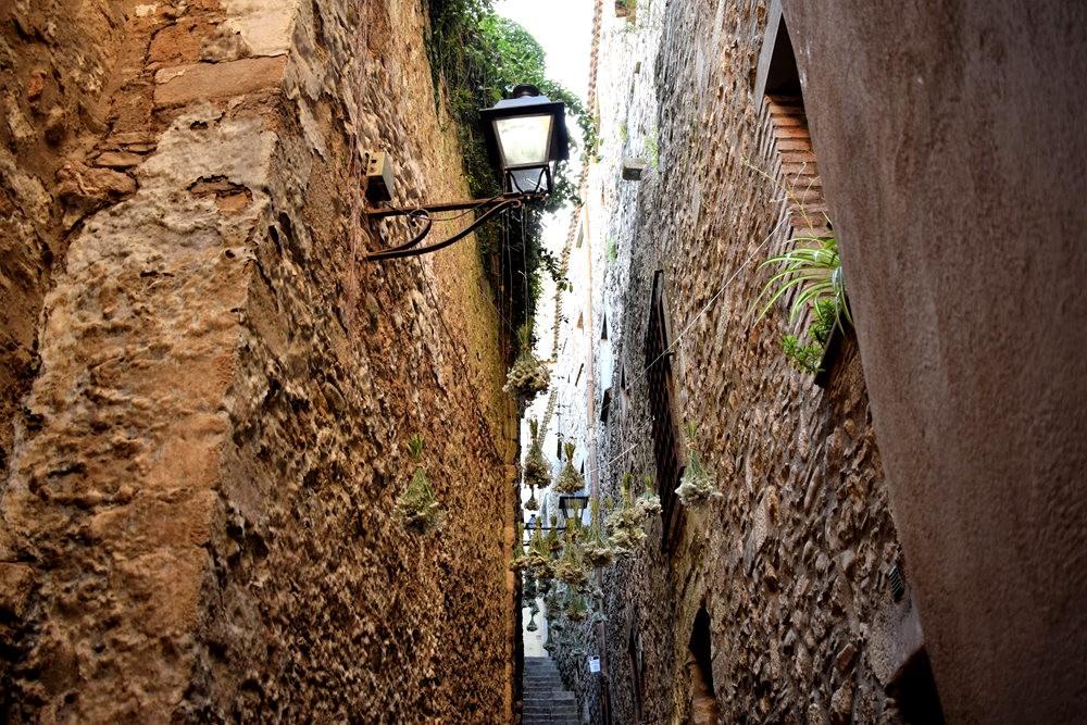 加泰罗尼亚小城--赫罗纳鲜花节  2_图1-9