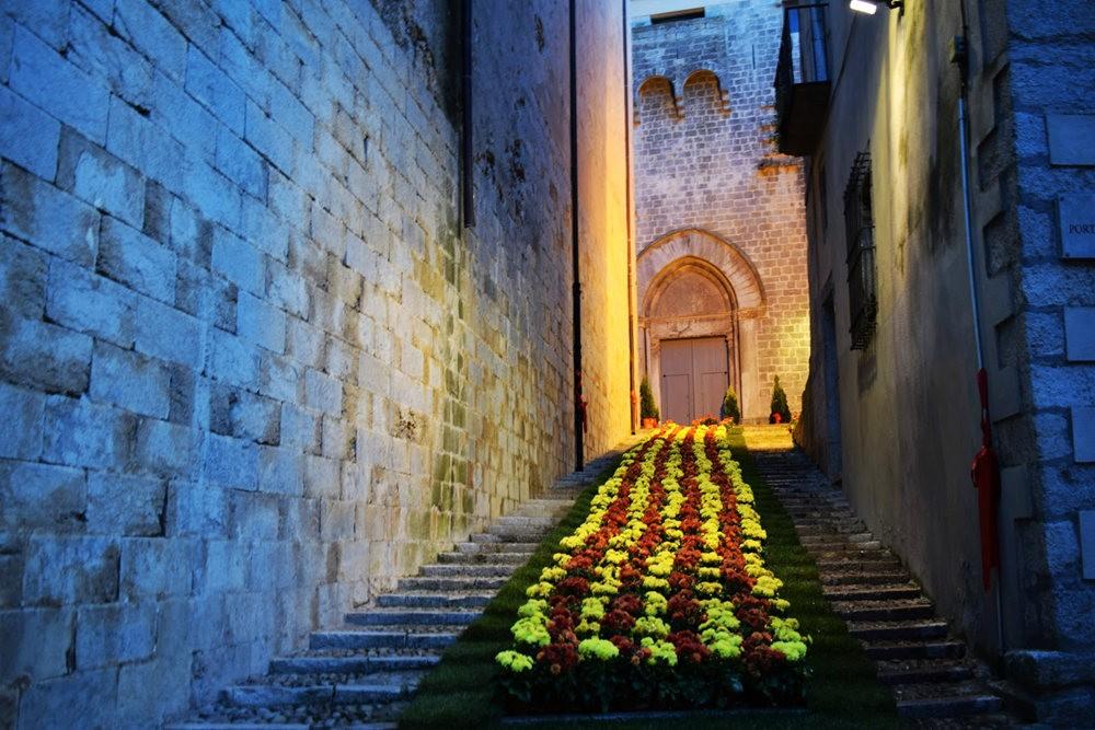 加泰罗尼亚小城--赫罗纳鲜花节  2_图1-19