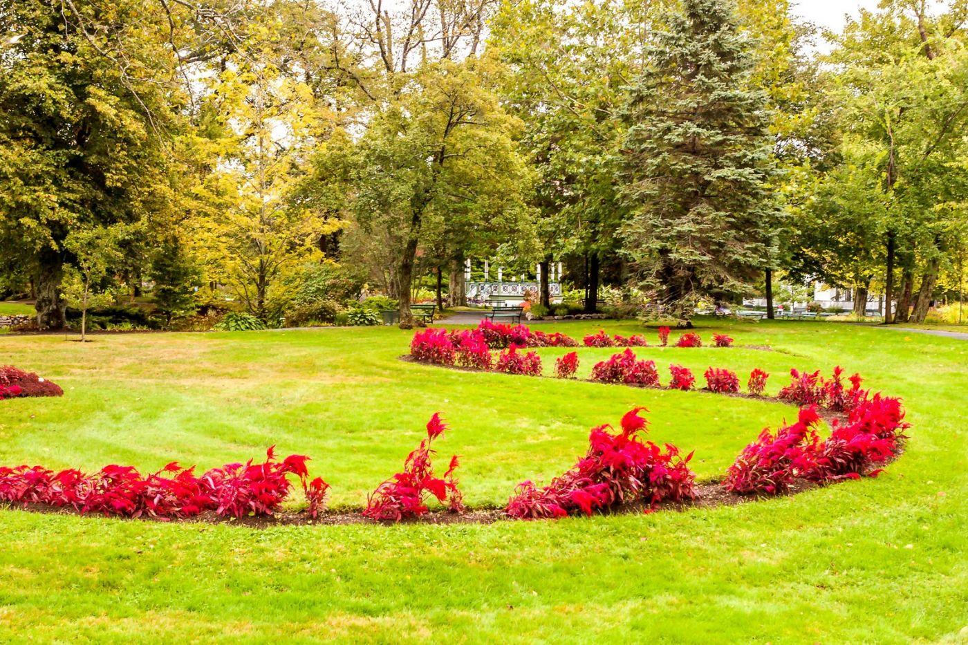 加拿大哈利法克斯(Halifax)公共花园,漂亮的花亭_图1-18