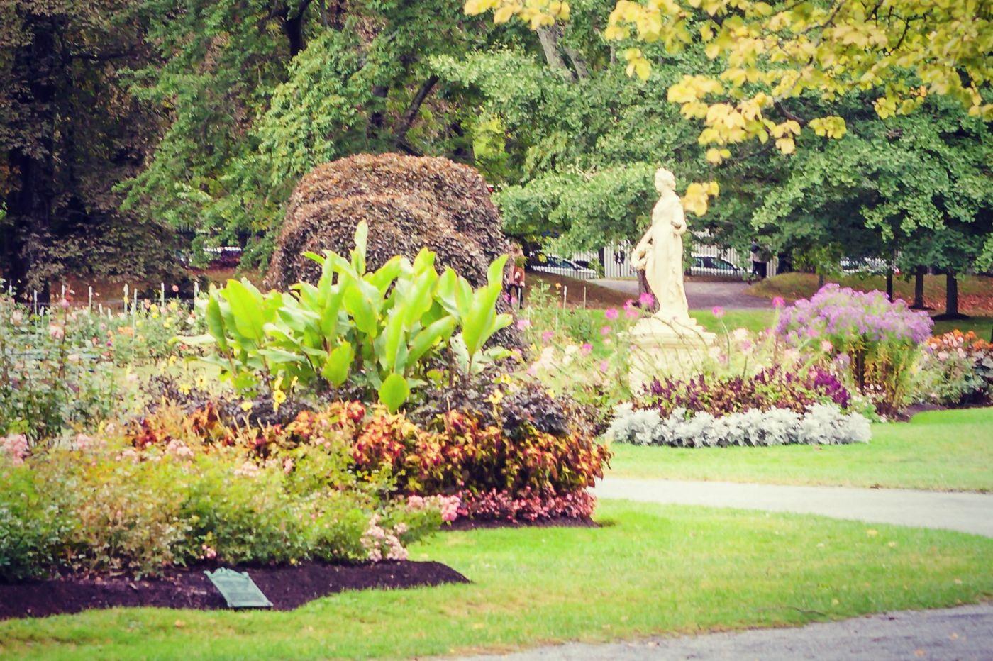加拿大哈利法克斯(Halifax)公共花园,漂亮的花亭_图1-15