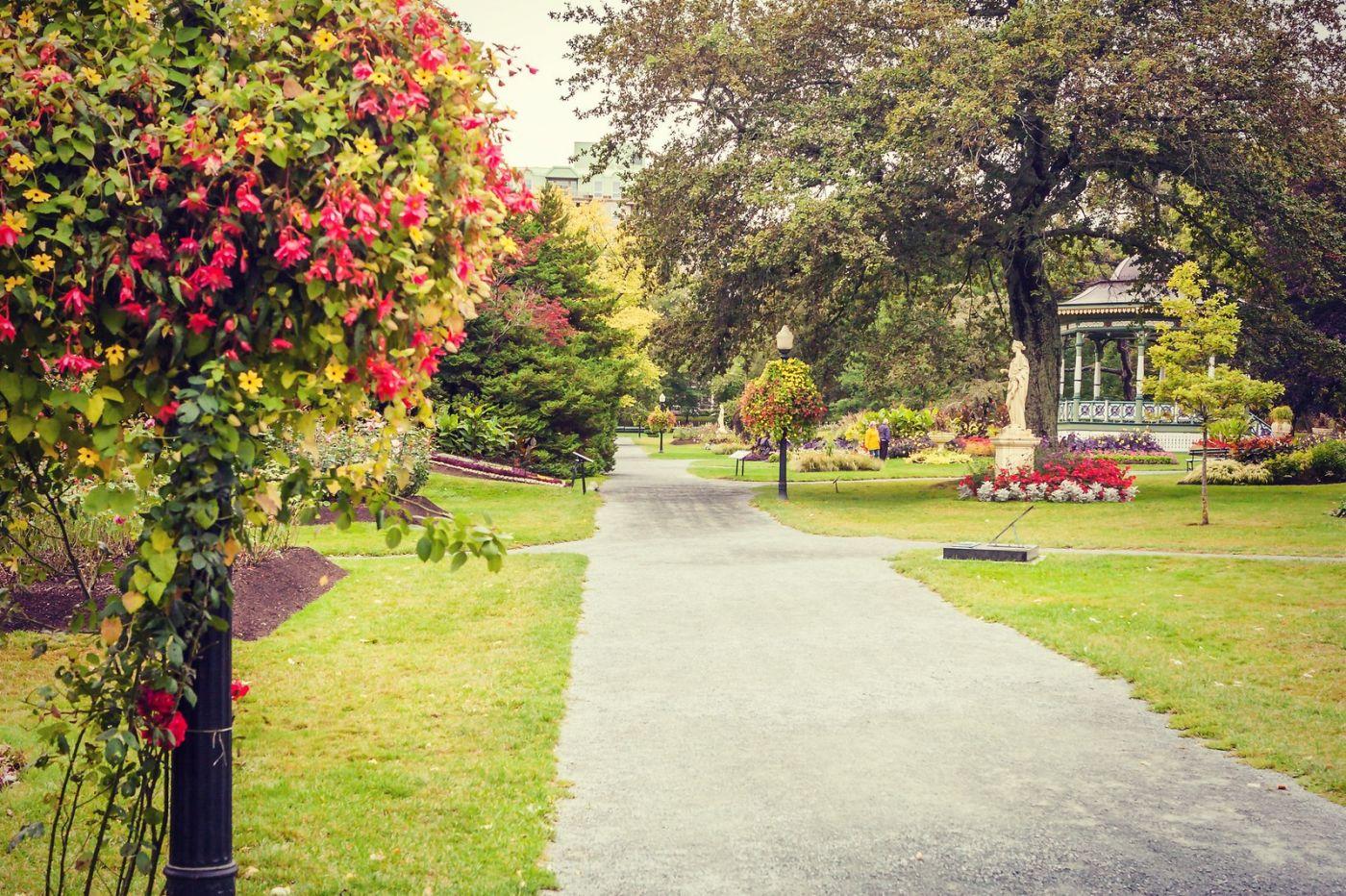 加拿大哈利法克斯(Halifax)公共花园,漂亮的花亭_图1-12