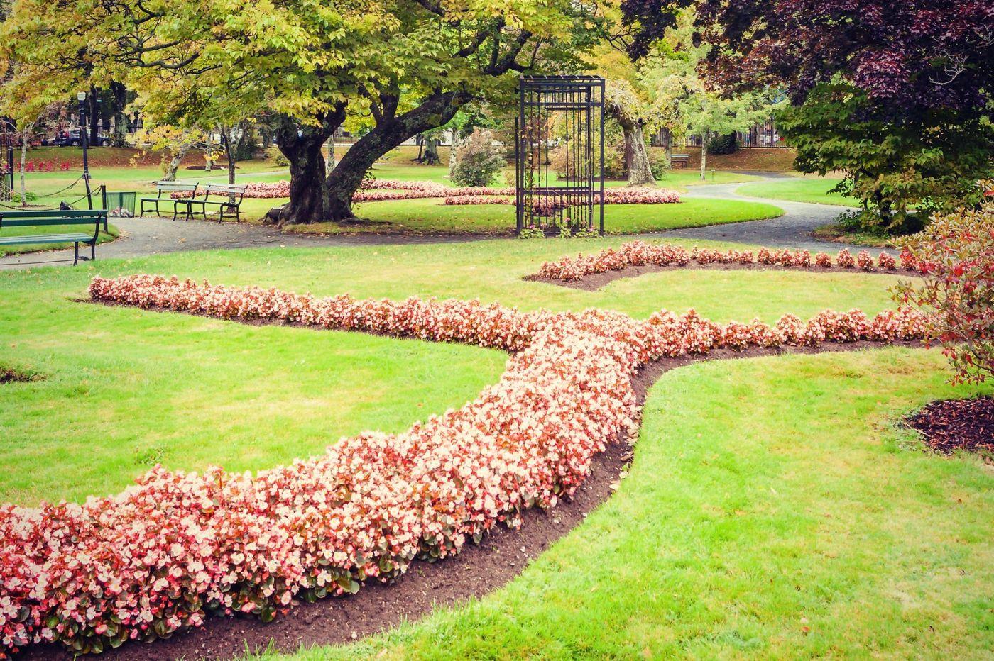 加拿大哈利法克斯(Halifax)公共花园,漂亮的花亭_图1-7