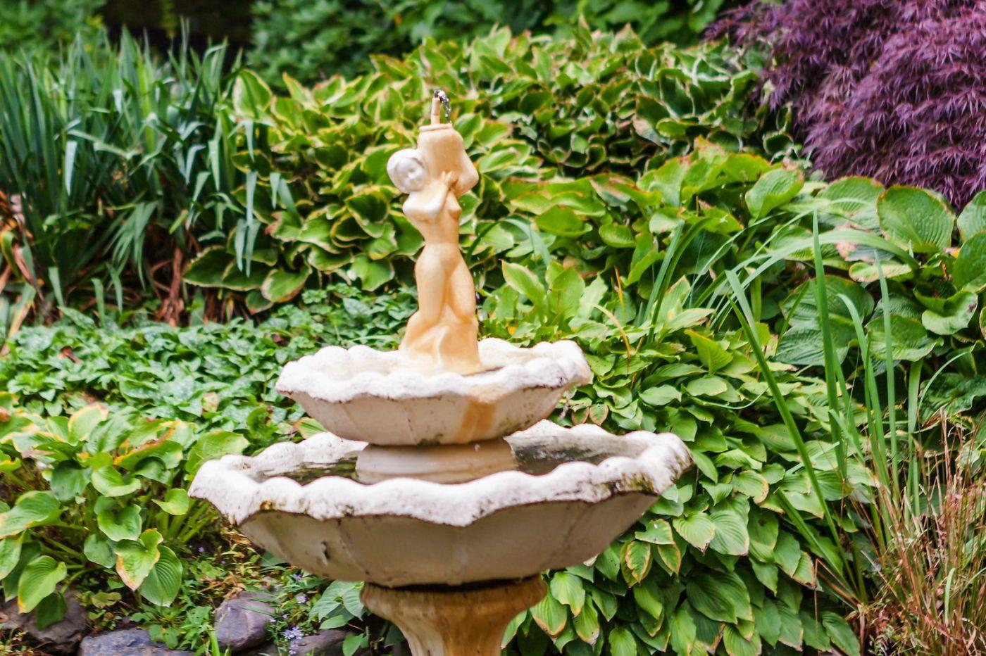加拿大哈利法克斯(Halifax)公共花园,漂亮的花亭_图1-6