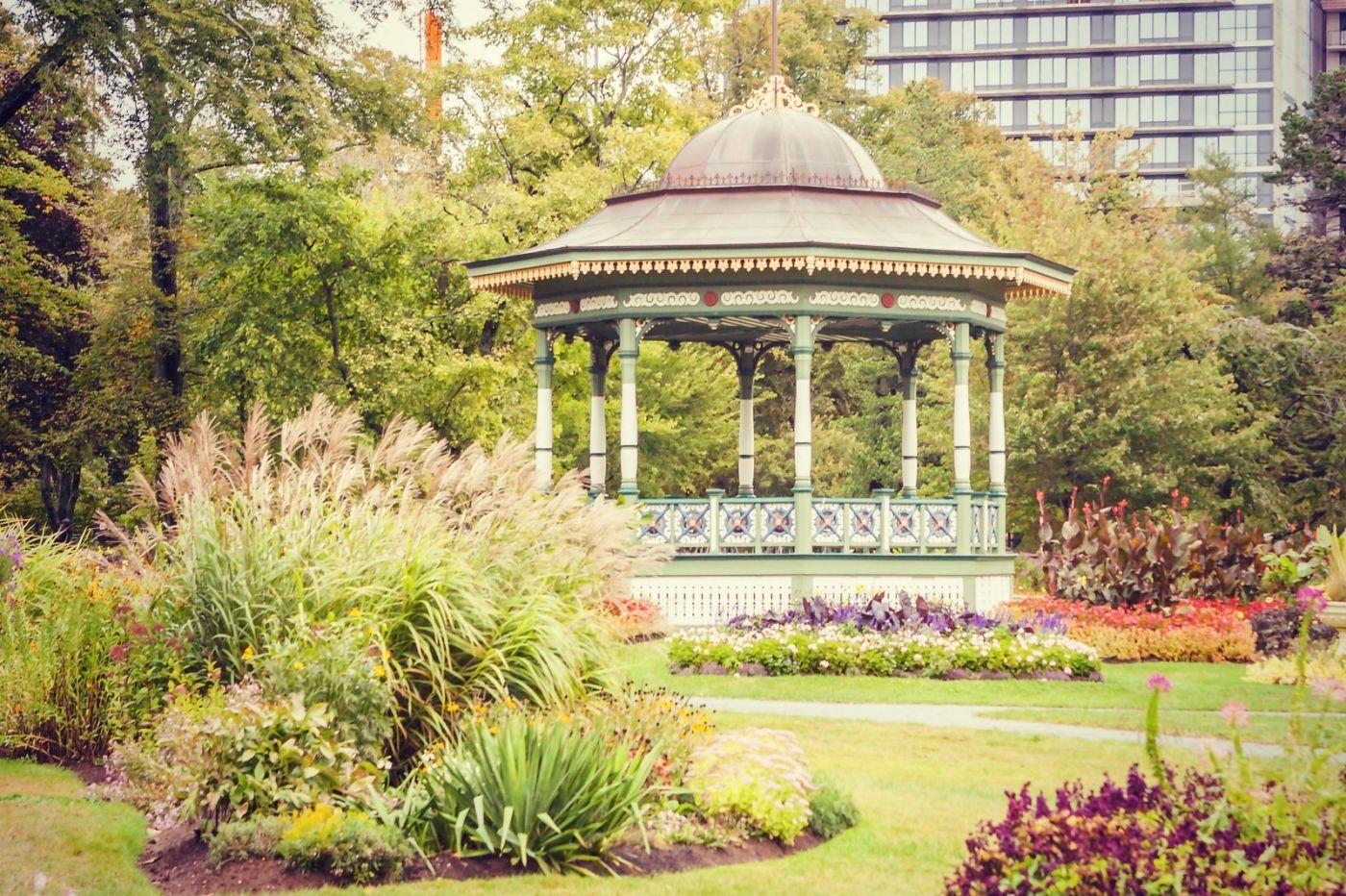 加拿大哈利法克斯(Halifax)公共花园,漂亮的花亭_图1-1