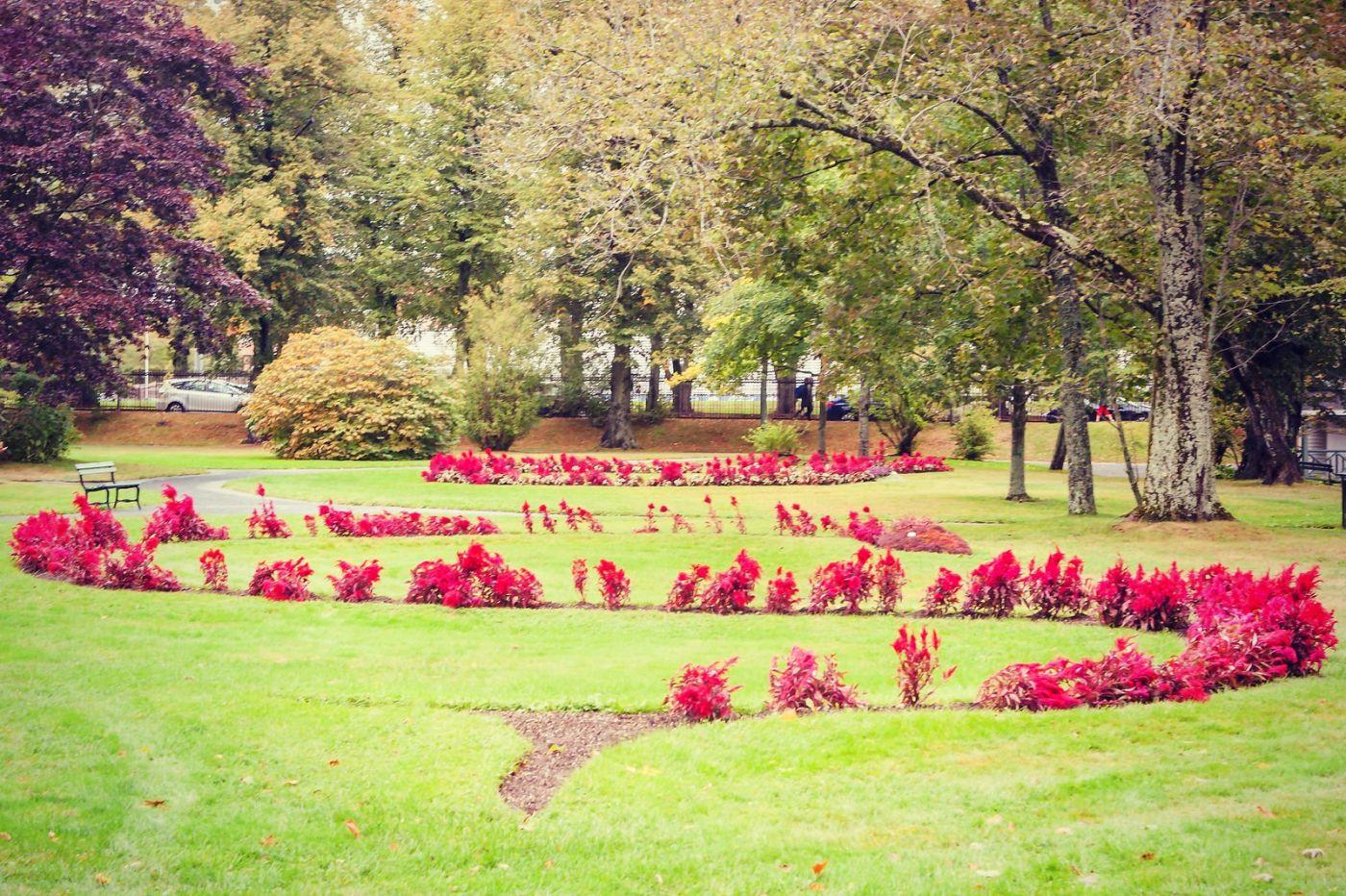 加拿大哈利法克斯(Halifax)公共花园,漂亮的花亭_图1-2