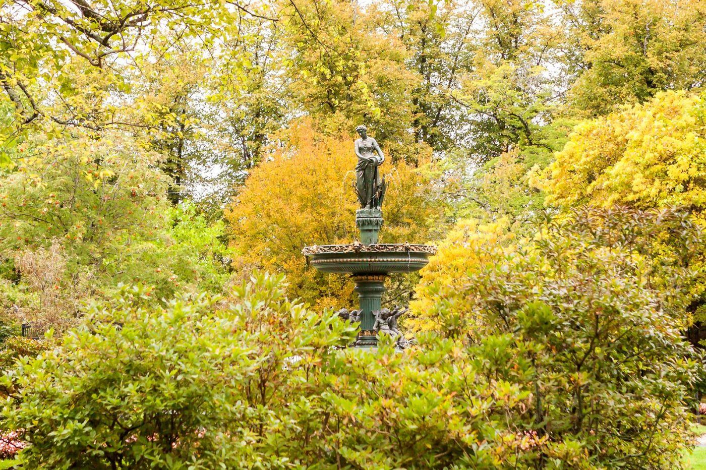 加拿大哈利法克斯(Halifax)公共花园,漂亮的花亭_图1-4