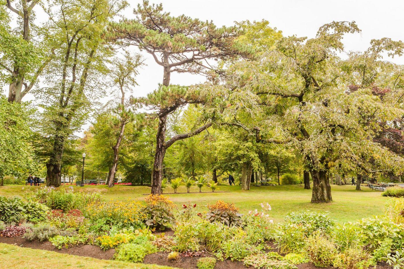 加拿大哈利法克斯(Halifax)公共花园,漂亮的花亭_图1-22