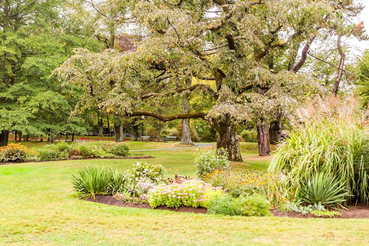 加拿大哈利法克斯(Halifax)公共花园,漂亮的花亭_图1-28