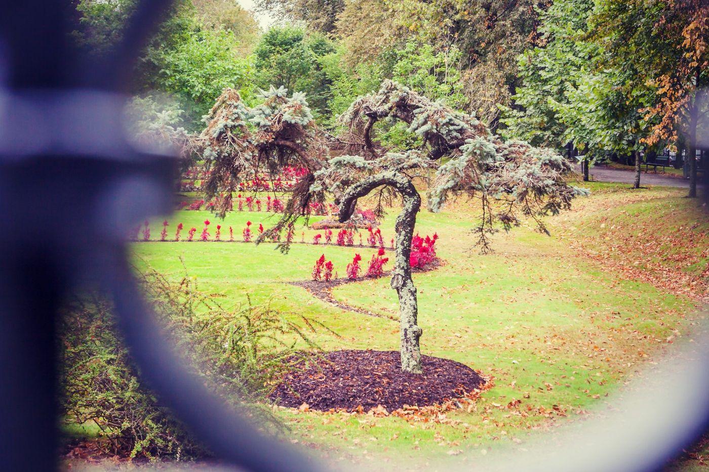加拿大哈利法克斯(Halifax)公共花园,漂亮的花亭_图1-33
