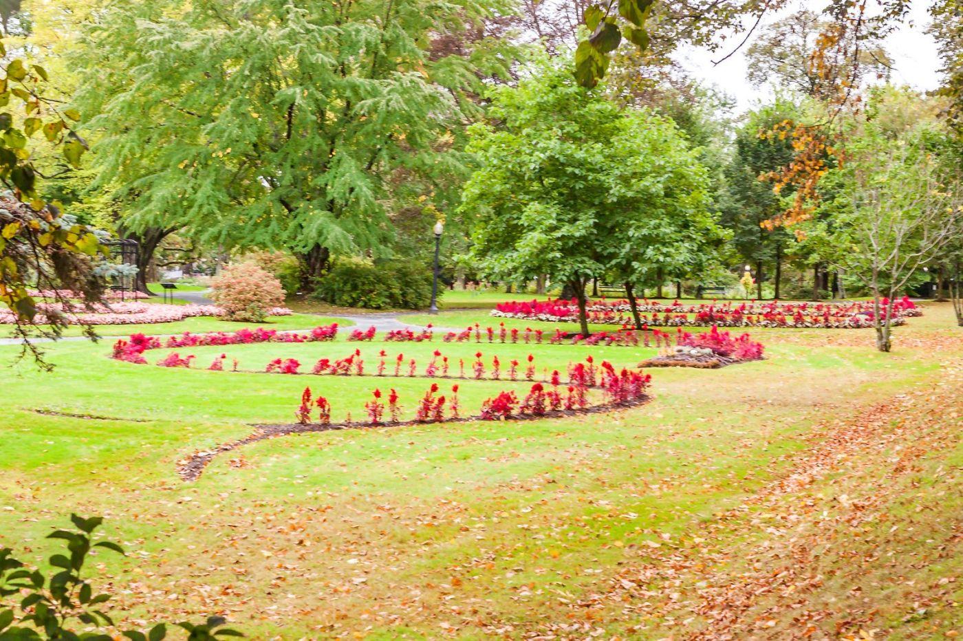 加拿大哈利法克斯(Halifax)公共花园,漂亮的花亭_图1-40
