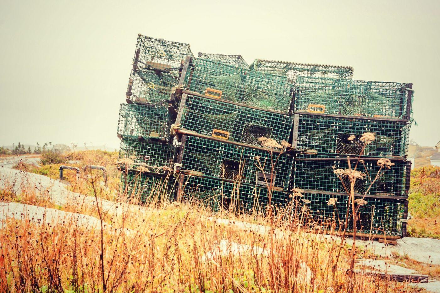 加拿大佩吉海湾(Peggy\'s Cove),小渔村的所见所闻_图1-39