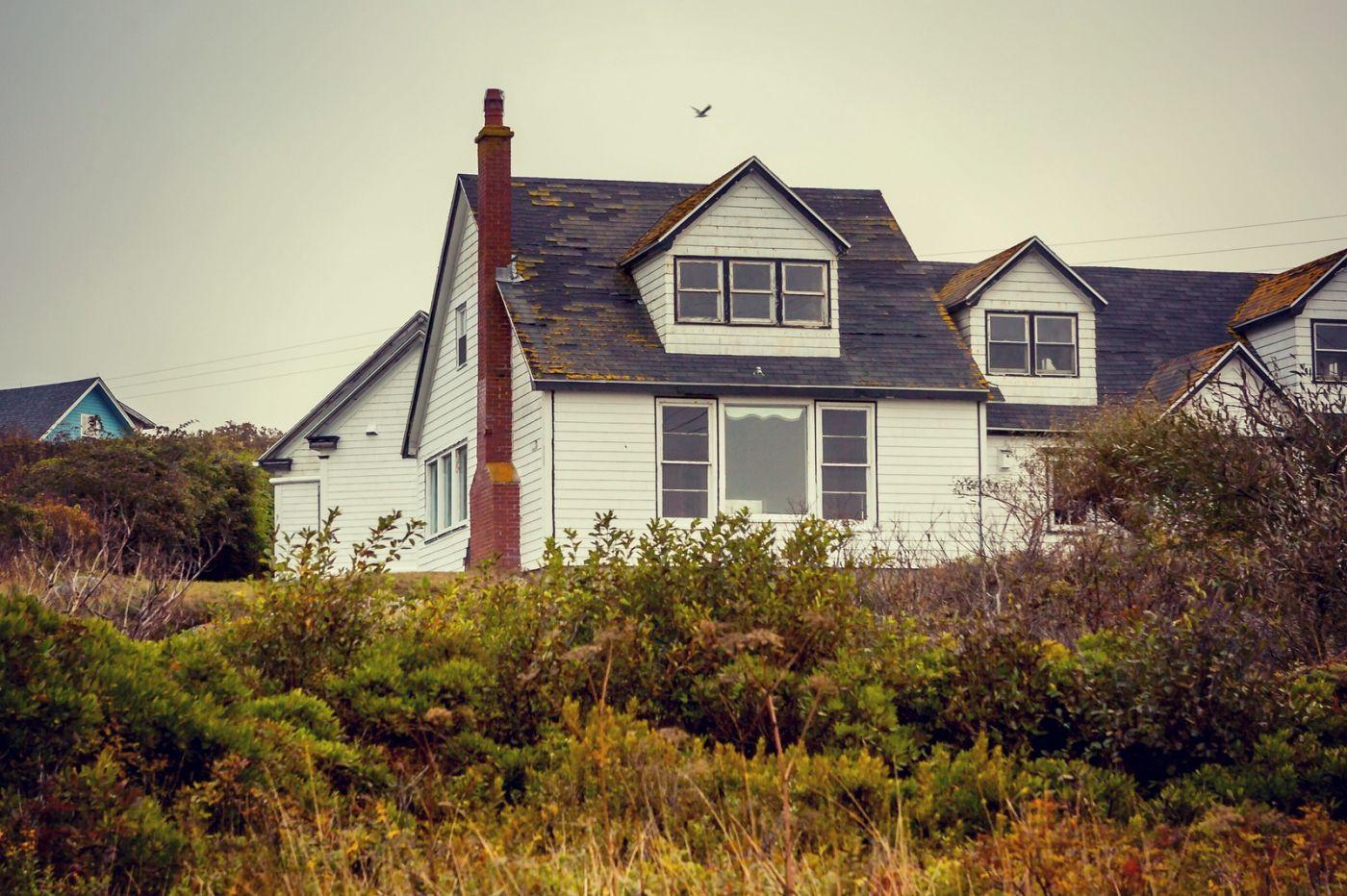 加拿大佩吉海湾(Peggy\'s Cove),小渔村的所见所闻_图1-26